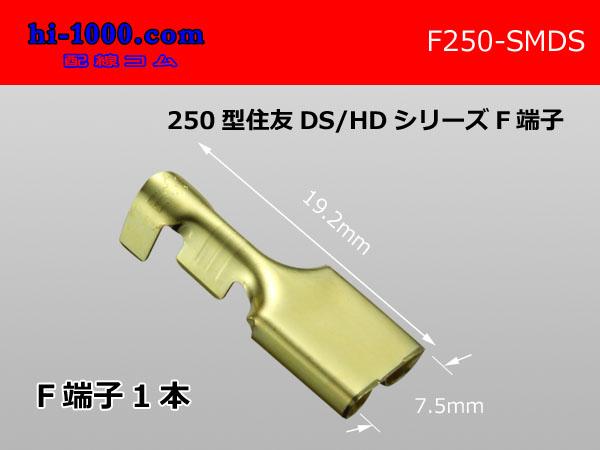 F250-SMDS(端子のみ)